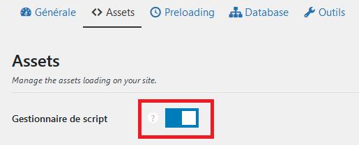 Cliquer sur gestionnaire de script pour activer les paramètres de perfmatters pour désactiver spécifiquement un plugin